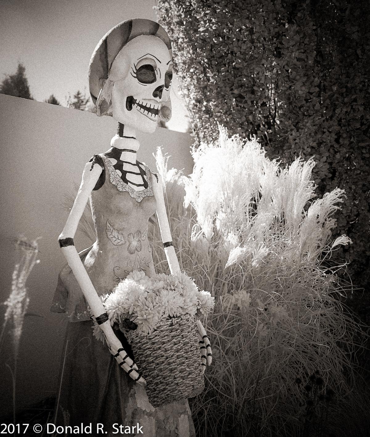 Dia de los Muertos at the Denver botanicGarden